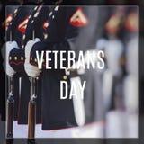 美国海军陆战队 愉快的退伍军人日 图库摄影