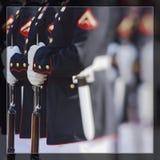 美国海军陆战队 愉快的退伍军人日 库存照片