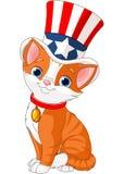 美国独立纪念日小猫 库存照片