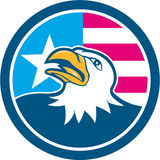 美国白头鹰头旗子边动画片 免版税库存照片