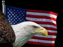 美国的标志 免版税库存照片