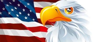 美国的标志 皇族释放例证