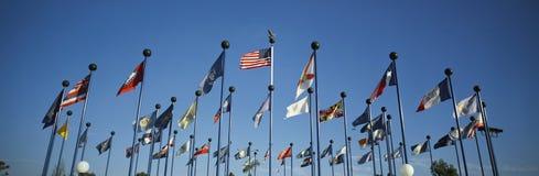 美国的50个状态标志 免版税图库摄影