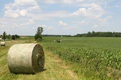 美国种田 免版税库存照片