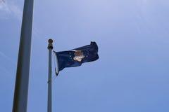 美国空军队旗子 免版税库存图片