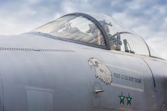 美国空军队F/A-15罢工老鹰机盖  库存照片