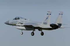 美国空军F-15老鹰 免版税库存图片