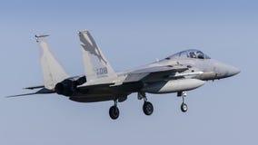 美国空军F-15C老鹰 免版税库存照片