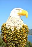美国老鹰由南瓜制成 免版税库存照片