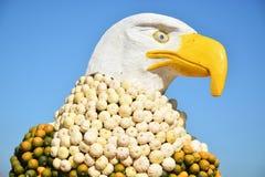 美国老鹰由南瓜制成 免版税库存图片