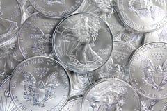 美国老鹰银 免版税库存照片