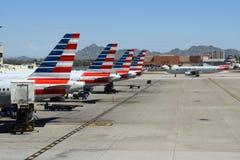 美国航空在天空港口的五条尾巴 库存图片