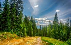 美国落矶山的风景视图 图库摄影