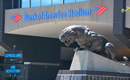 美国银行体育场 库存图片