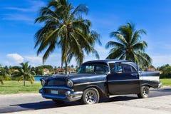 美国黑薛佛列经典汽车停放了在棕榈下在巴拉德罗角古巴- Serie古巴报告文学的海滩附近 免版税库存照片
