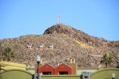 美国,亚利桑那:在坦佩的小山的圣诞节