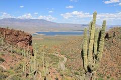美国,亚利桑那:看法到与Roosevelt湖的Salt河谷里 免版税库存照片