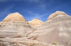 美国, AZ :化石森林NP -五颜六色的荒地 免版税图库摄影