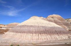 美国, AZ :化石森林NP -多彩多姿的小山 免版税图库摄影
