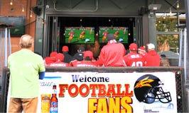 美国, AZ :受欢迎的足球迷 免版税库存照片