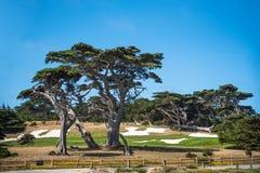 美国-2015年6月:Pebble海滩高尔夫球场看了在17英里驱动 免版税库存照片