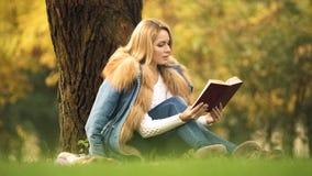 美女作为坐的读书畅销书在树下在秋天森林里,爱好 图库摄影