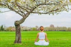 美女实践坐在莲花姿势的瑜伽在开花树附近 库存图片