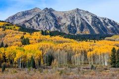 美好和五颜六色的科罗拉多落矶山脉秋天风景 库存照片
