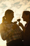 美好夫妇敬酒 库存照片