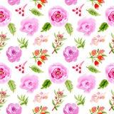 美好水彩花卉无缝的样式 向量例证