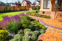 美好环境美化与美丽的植物 免版税库存图片