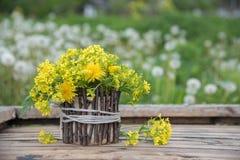美好的一点黄色开花的花花束叫r 库存图片