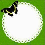 美好的与一只蝴蝶的春天圆的框架在背景  免版税库存图片