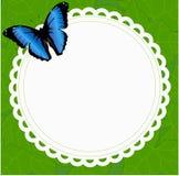 美好的与一只蝴蝶的春天圆的框架在背景  图库摄影