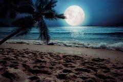 美好的与星和满月的幻想热带海滩在夜空 免版税图库摄影