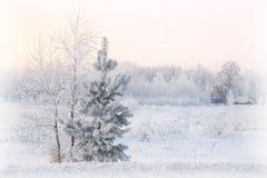 美好的与树和房子选择聚焦的冬天多雪的风景 库存照片