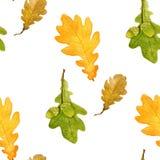 美好的与橡木叶子和橡子的秋天无缝的样式 水彩技术 库存照片