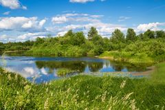 美好的与河的夏天农村风景 图库摄影