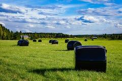 美好的乡下横向 在黑塑料的圆的秸杆大包在绿色领域 库存照片