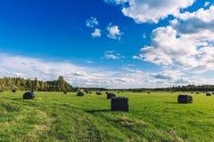 美好的乡下横向 在黑塑料的圆的秸杆大包在绿色领域 库存图片