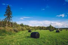 美好的乡下横向 在黑塑料的圆的秸杆大包在绿色领域 免版税图库摄影