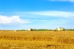 美好的乡下风景 在麦田的联合收割机 库存照片