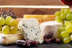 美好的乳酪的选择 库存照片