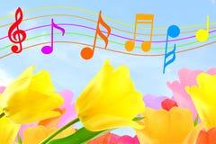 美好的五颜六色的音乐笔记在天空和花背景中 库存照片