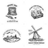 美好的传染媒介手拉的面包店和面包商店例证 免版税库存照片
