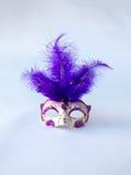 美好的传统威尼斯式样式紫色和白色与长的羽毛狂欢节面具,在白色的华美的化妆舞会辅助部件 库存图片