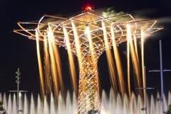 美好的光的长的曝光夜照片,水和烟花从生物演化谱系图解,商展的标志显示2015年 免版税库存照片