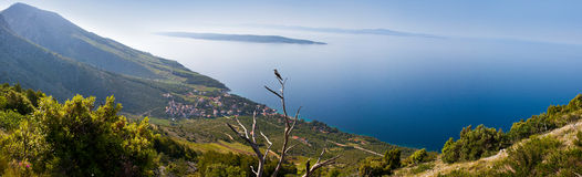 美好的克罗地亚hvar海岛视图 库存图片