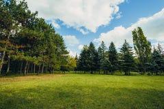 美好的公园场面在有绿草领域、绿色树植物和一多云天空蔚蓝的公园 免版税库存图片