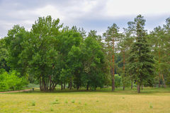美好的公园风景 免版税库存图片
